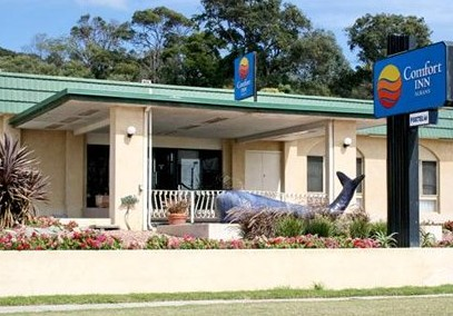 Comfort Inn Albany - Accommodation Gold Coast