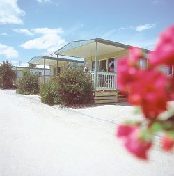 Eldorado Tourist Park - Accommodation Gold Coast