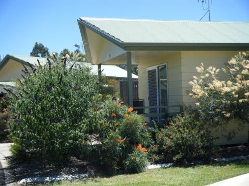 Pepper Tree Cabins - Accommodation Gold Coast