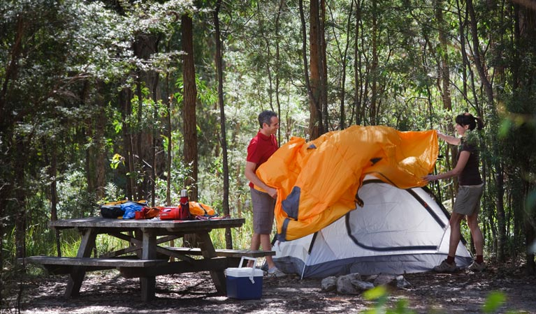 Bald Rock campground and picnic area - Accommodation Gold Coast