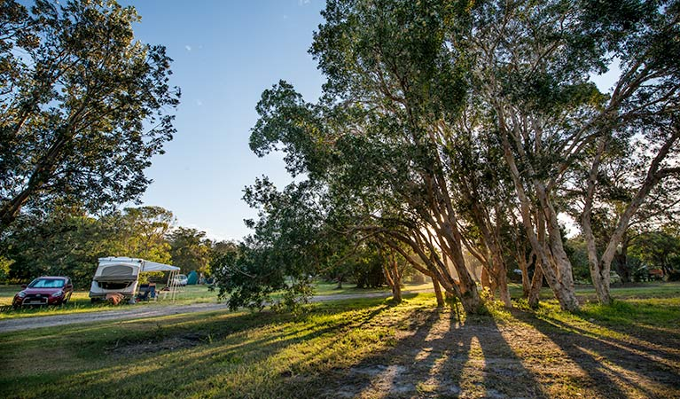 Delicate campground - Accommodation Gold Coast
