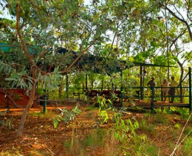 Arnhemland Barramundi Nature Lodge - Accommodation Gold Coast