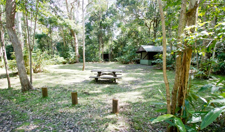 Iron Pot Creek campground - Accommodation Gold Coast