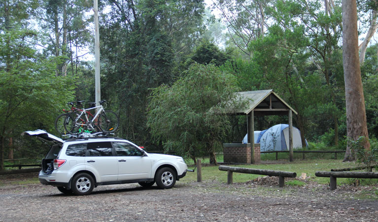 Mill Creek campground - Accommodation Gold Coast