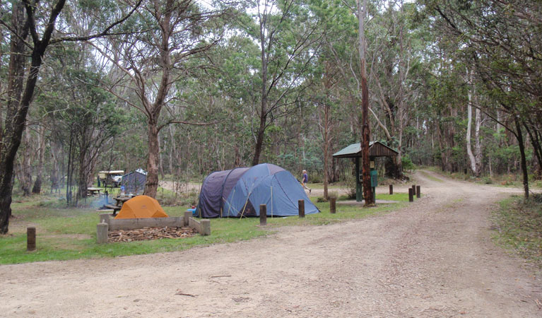 Native Dog campground - Accommodation Gold Coast