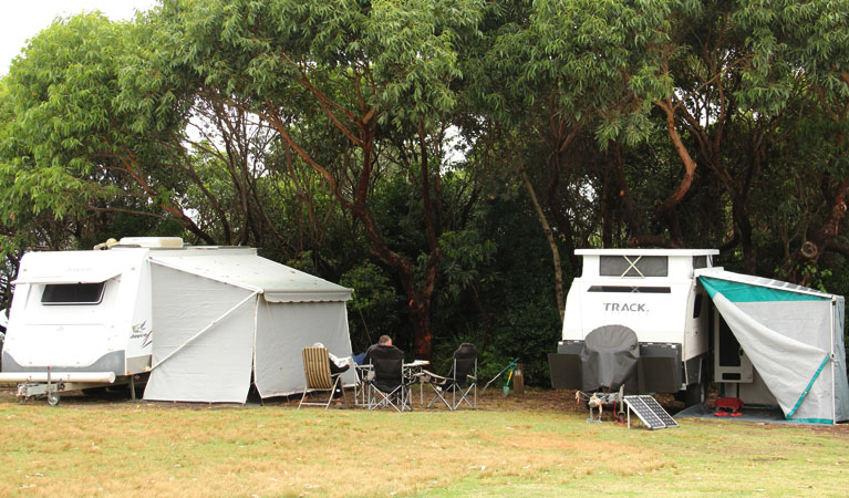 Pretty Beach campground - Murramarang National Park - Accommodation Gold Coast