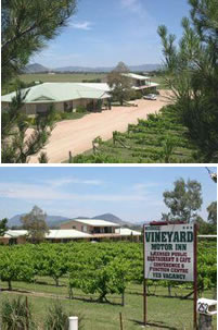 Mudgee Vineyard Motor Inn - Accommodation Gold Coast