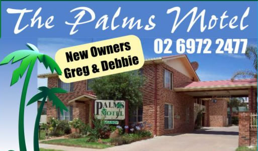 The Palms Motel - Accommodation Gold Coast