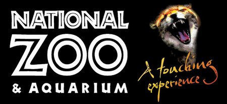 National Zoo  Aquarium - Accommodation Gold Coast