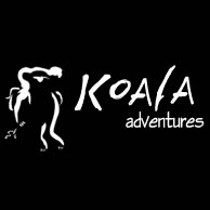 Koala Adventures - Accommodation Gold Coast