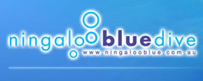 Ningaloo Blue Dive - Accommodation Gold Coast
