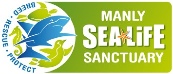 Manly SEA LIFE Sanctuary - Accommodation Gold Coast