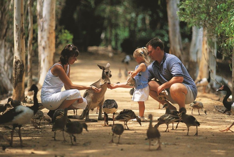 Billabong Sanctuary - Accommodation Gold Coast