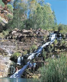 Fortescue Falls - Accommodation Gold Coast