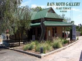 Rain Moth Gallery - Accommodation Gold Coast