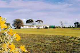Lucindale Country Club - Accommodation Gold Coast