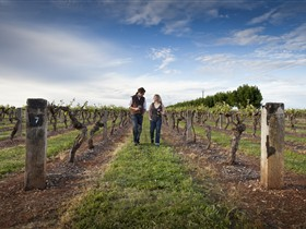 Coonawarra Wineries Walking Trail - Accommodation Gold Coast