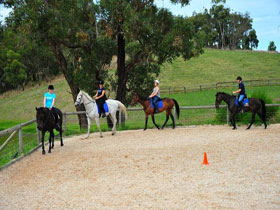 Megan Jones Riding School and Trail Rides - Accommodation Gold Coast