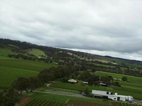 Kangarilla Road Vineyard And Winery - Accommodation Gold Coast