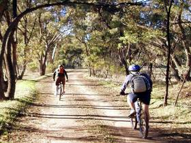 Bike About Mountain Bike Tours And Hire - Accommodation Gold Coast