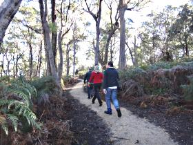 Bridport Walking Track - Accommodation Gold Coast