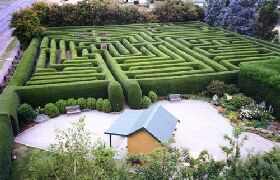 Westbury Maze and Tea Room - Accommodation Gold Coast