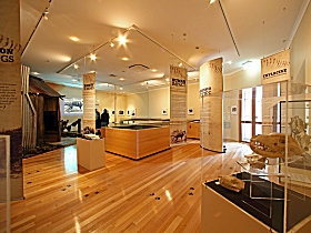 Tasmanian Tiger Exhibition - Accommodation Gold Coast