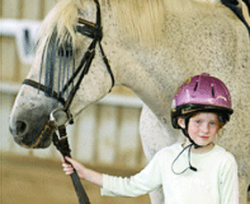 Gooromon Park Riding Centre  - Accommodation Gold Coast