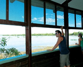 Mamukala Wetlands and Bird Hide - Accommodation Gold Coast