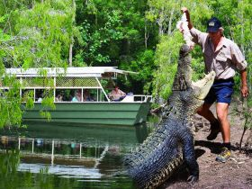 Hartleys Crocodile Adventures - Accommodation Gold Coast