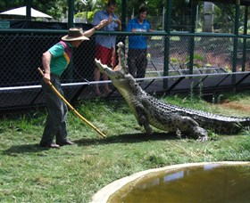Snakes Downunder Reptile Park and Zoo - Accommodation Gold Coast