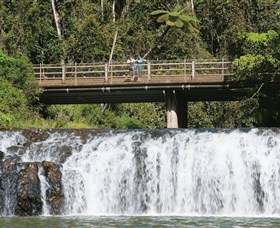 Malanda Falls Conservation Park - Accommodation Gold Coast