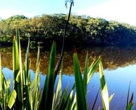 Aura Vale Lake Park - Accommodation Gold Coast
