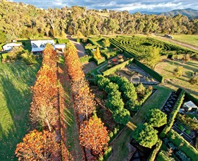 High Country Maze - Accommodation Gold Coast