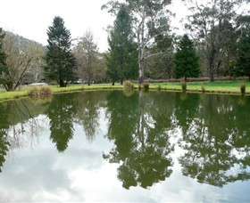 Mountain Fresh Trout and Salmon Farm - Accommodation Gold Coast