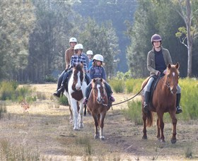 Horse Riding at Oaks Ranch and Country Club - Accommodation Gold Coast