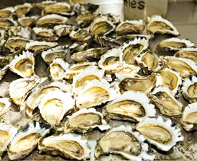 Wheelers Oysters - Accommodation Gold Coast