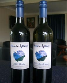 Thunder Ridge Wines - Accommodation Gold Coast