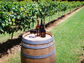 Cedar Creek Estate Vineyard and Winery - Accommodation Gold Coast