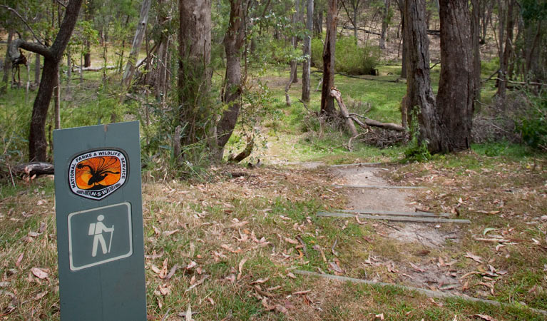 Moolarben picnic area - Accommodation Gold Coast