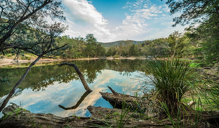 Warrabah National Park - Accommodation Gold Coast