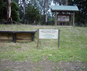 Shelley Forest Camp - Accommodation Gold Coast