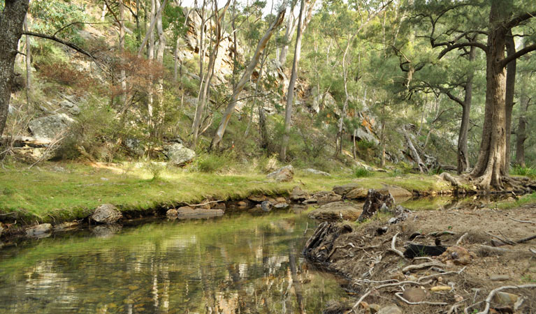 Capertee National Park - Accommodation Gold Coast