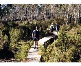 Hume and Hovell Walking Track - Henry Angel Trackhead - Accommodation Gold Coast