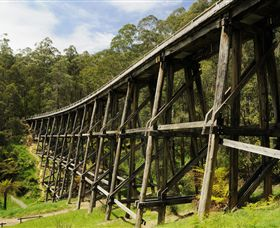 Noojee Trestle Bridge - Accommodation Gold Coast