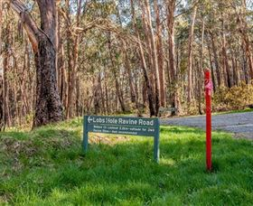 Lobs Hole Ravine 4WD Trail - Accommodation Gold Coast