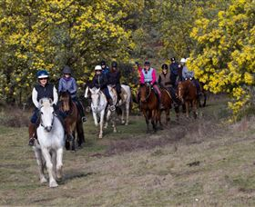 Burnelee Excursions on Horseback - Accommodation Gold Coast
