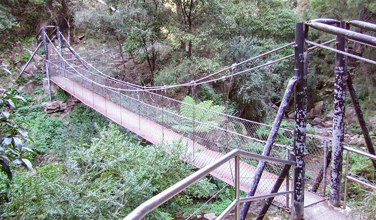 Jenolan River walking track - Accommodation Gold Coast