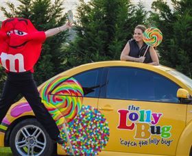 The Lolly Bug - Accommodation Gold Coast