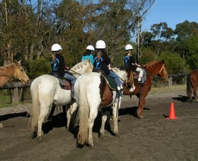 Darkes Forest Riding Ranch - Accommodation Gold Coast